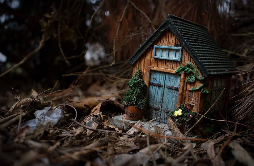 zbliżenie na model domu w lesie