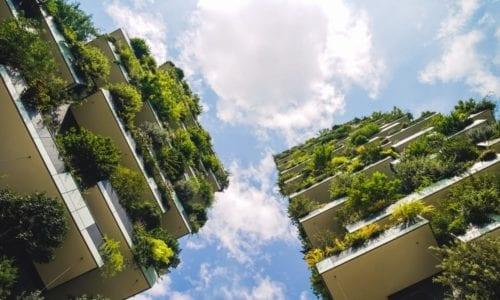 zielone budownictwo