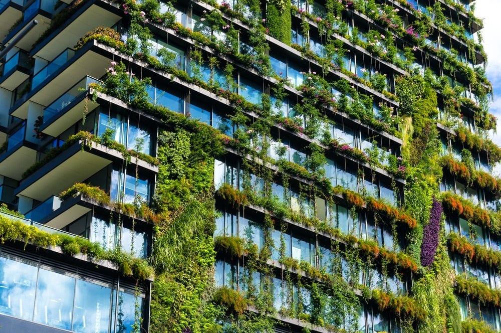 zielone budynki